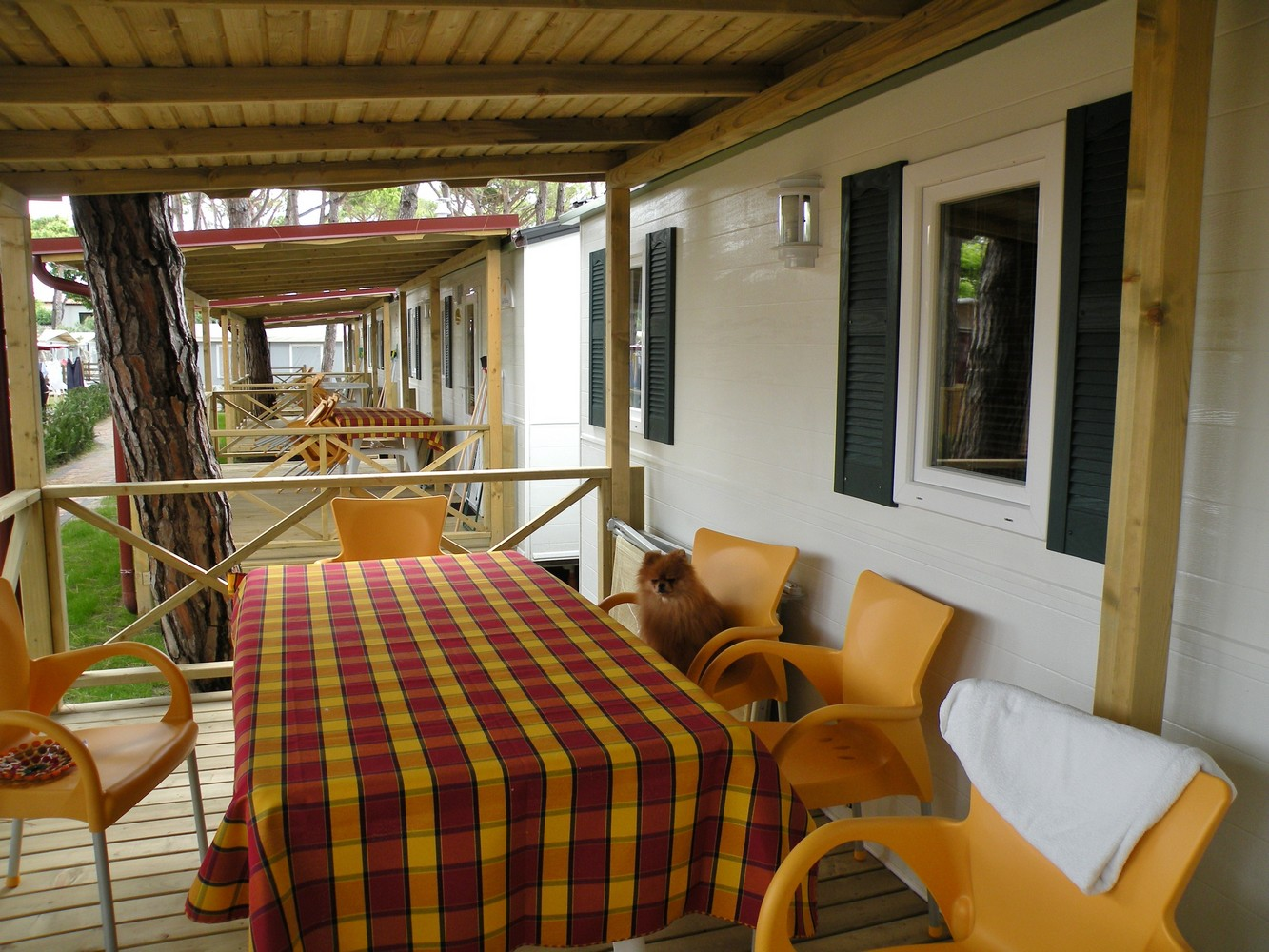 Camping Vela Blu -  Cavallino Treporti