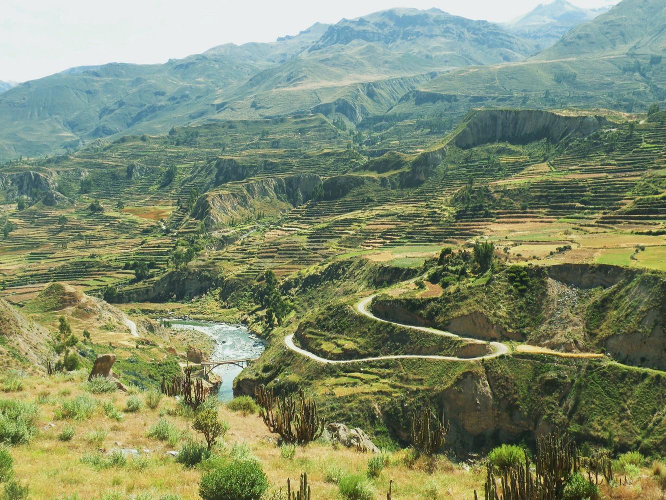 Route de Cruz del Cura à Yanque