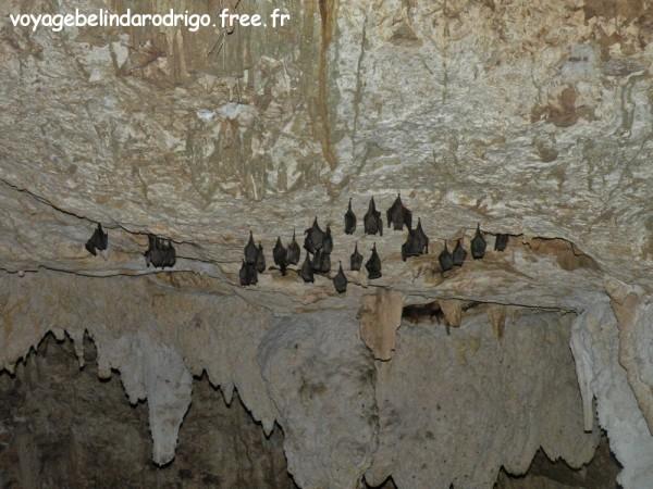 Cueva de Chicho - Sendero Padre Nuestro - Parque Nacional del Este