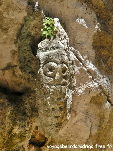 Pétroglyphe - Cueva de la Arena - Parque Nacional Los Haitises