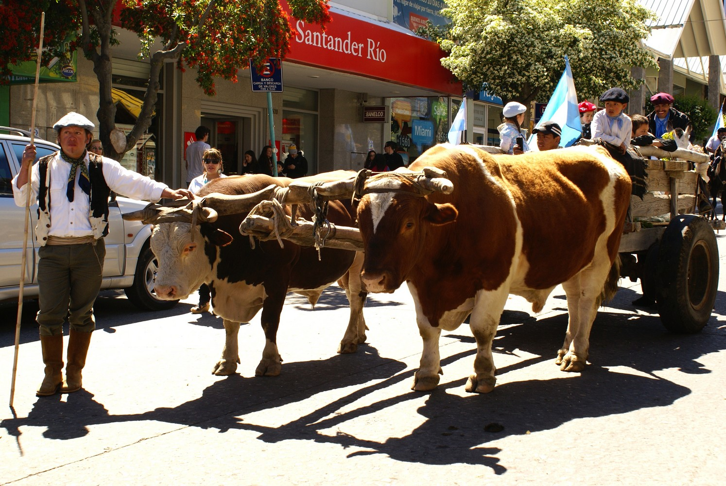 Fiesta de la Tradicion (5)