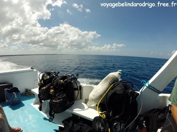 Isla Catalina - Bayahibe