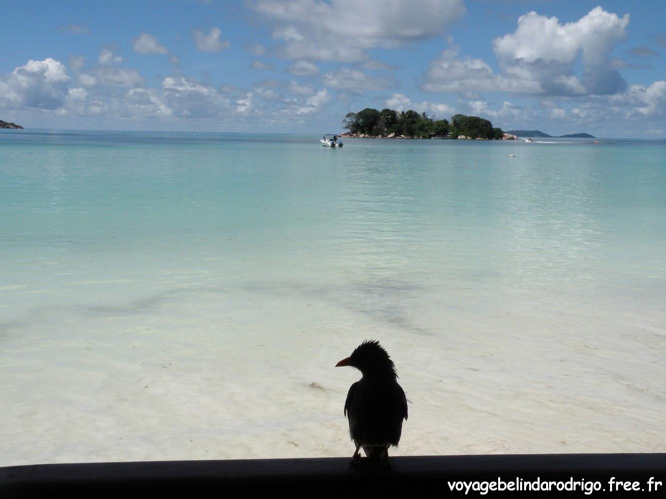 Paradise Sun - Anse Volbert - Praslin