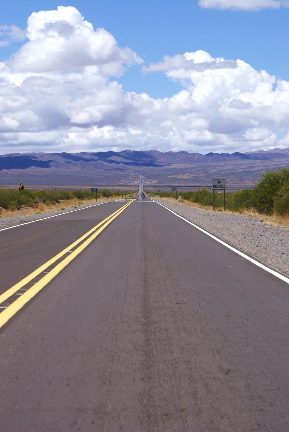 Parque Nacional Los Cardones - Recta Tin Tin