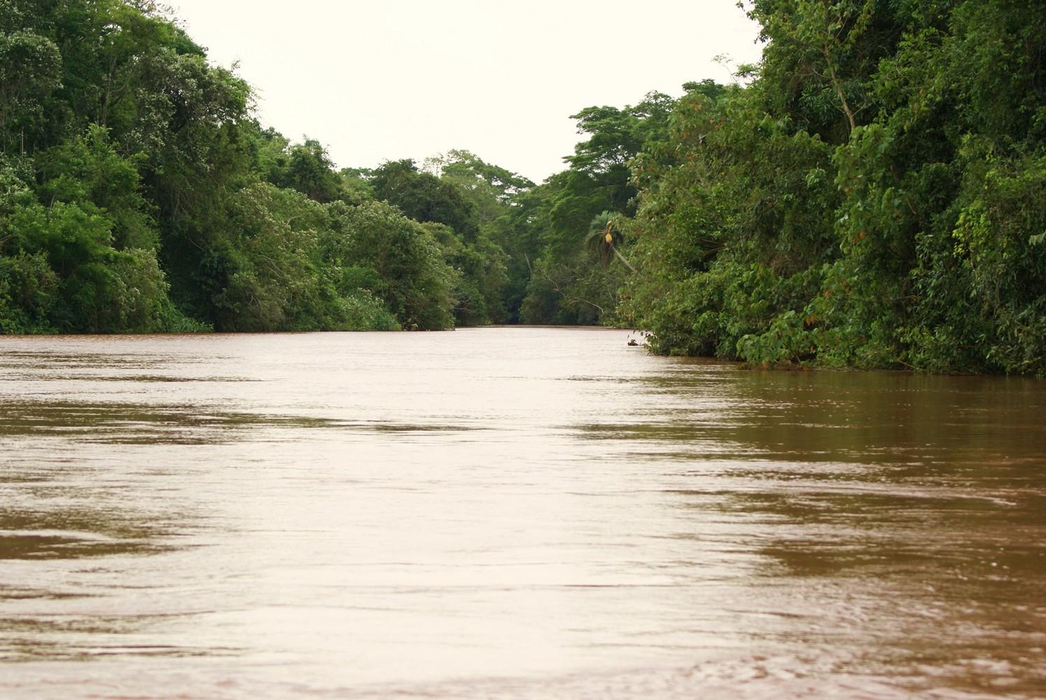Paseo Ecológico – Parque Nacional Iguazú