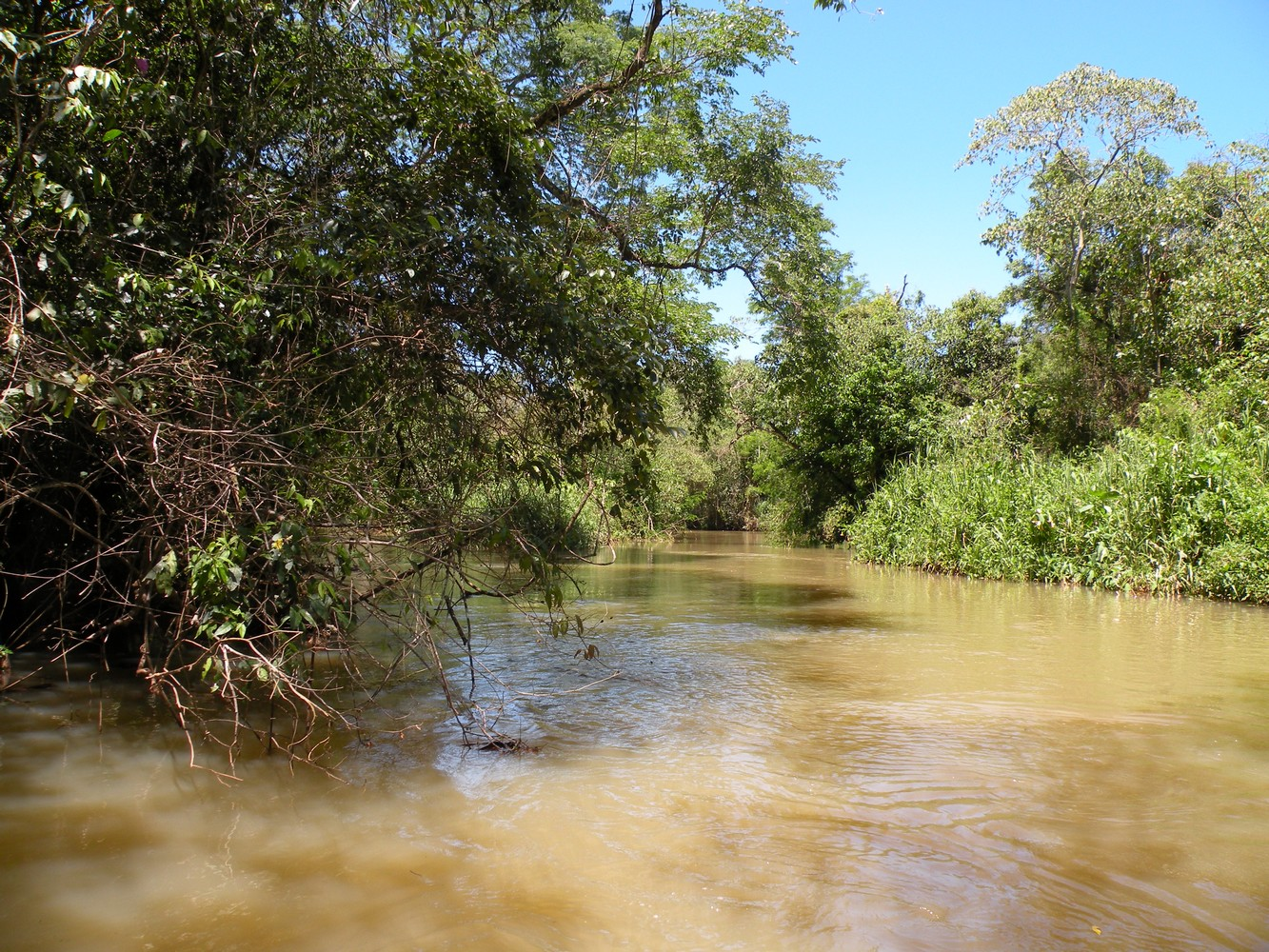 Paseo Ecológico - Parque Nacional Iguazú