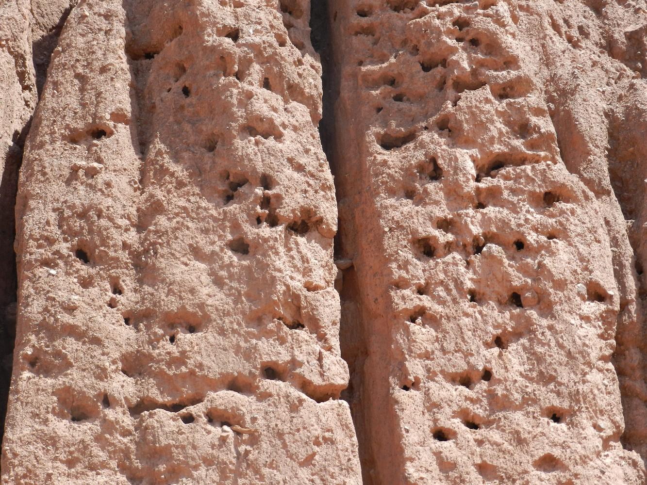 Quebrada de las Conchas - Casa de Loros