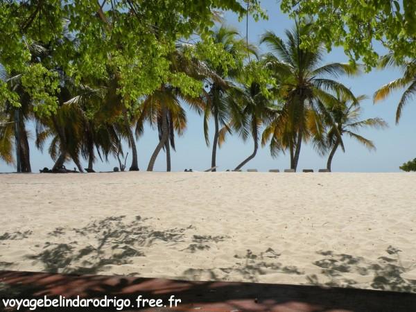 Repas - Plage Isla Catalina