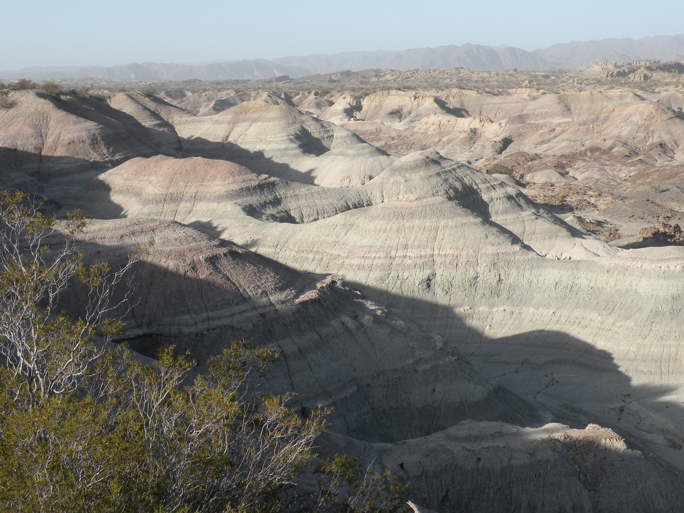 Valle Pintado - Ischigualasto