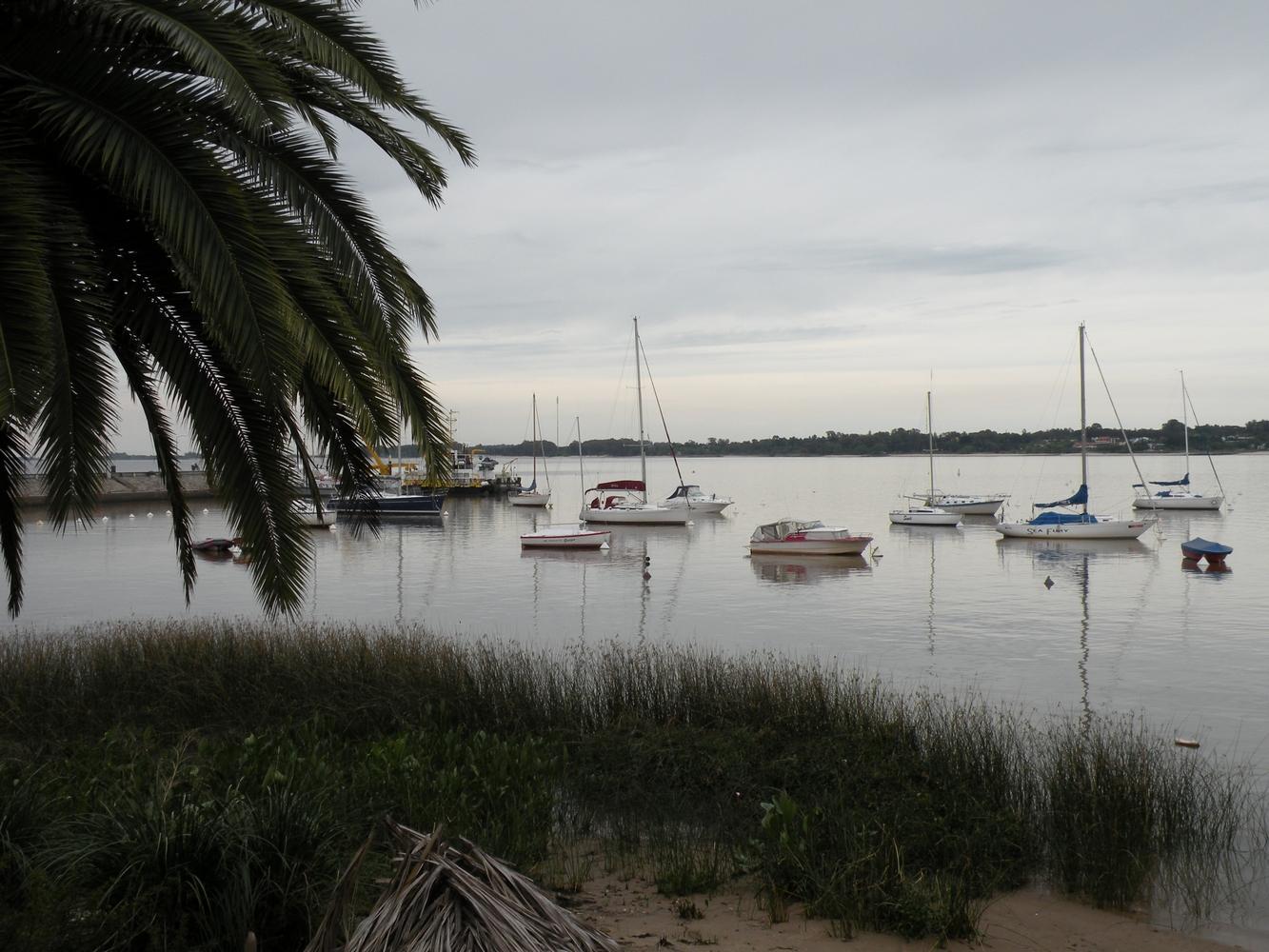 petit port - Colonia